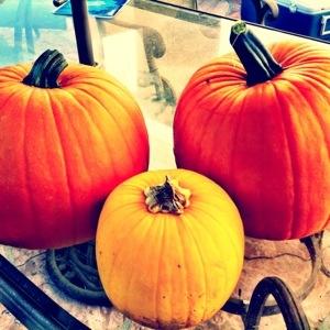 Happy Halloween Pumpkins!!