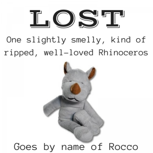 I Lost a Rhinoceros