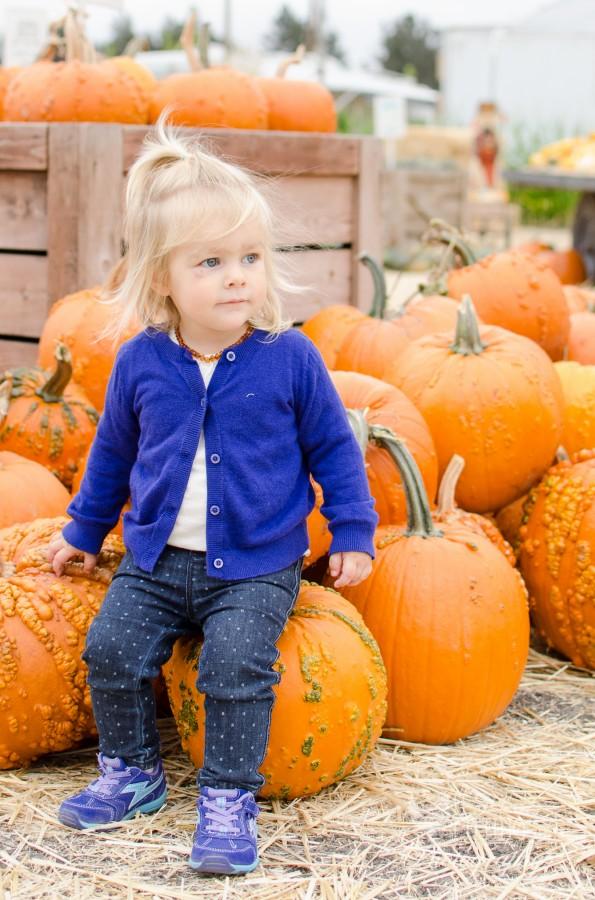 Pumpkin Patch Abby-3
