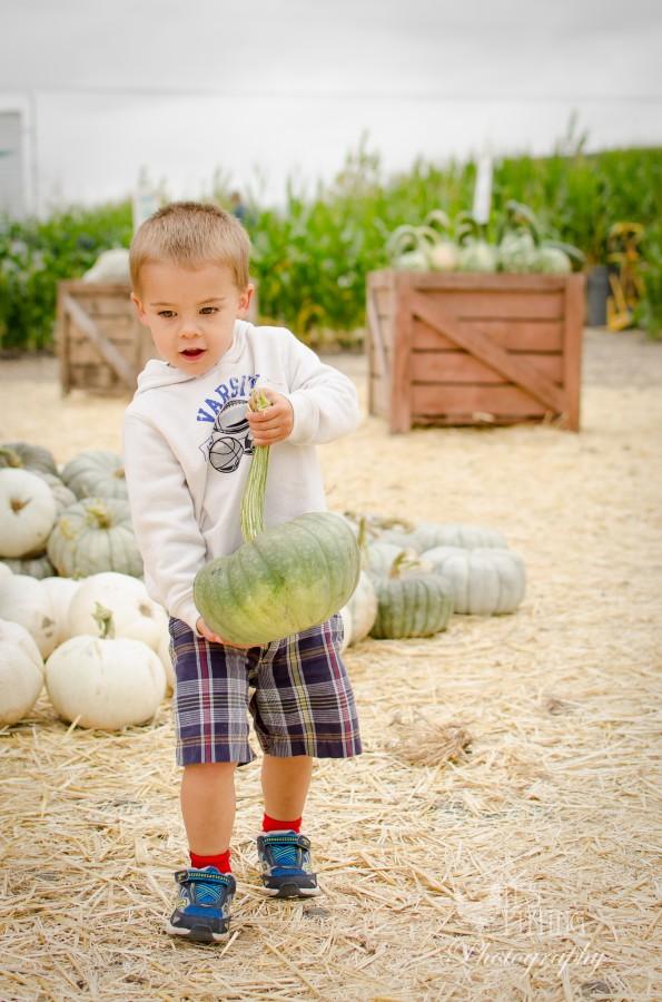 Pumpkin Patch Charlie Watermark