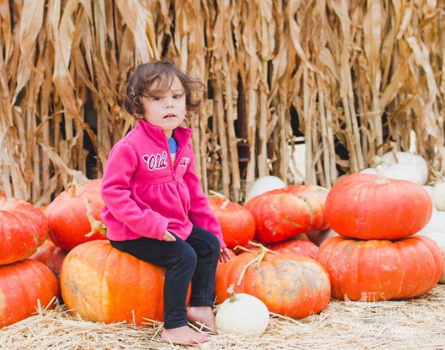 Pumpkin Patch Sabrina Watermark