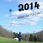 2014_recap