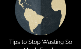 stop-wasting-food-and-money