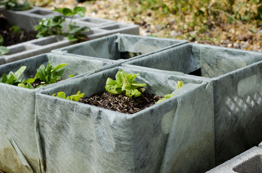 milk-crate-planters-gardening-with-your-kids